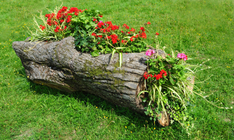 садовые поделки