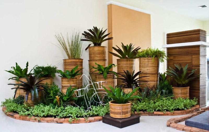 Идеи декора кухни зелеными растениями